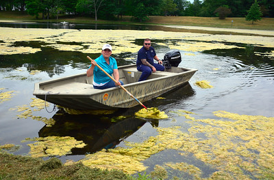 6/28/2016 Mike Orazzi | Staff New Britain Mayor Erin Stewart's while at the pond in Stanley Quarter Park as city workers attempt to clear algae while preparing for the city's July 4th events. In the boat with her is city employee Joe Vereneau.