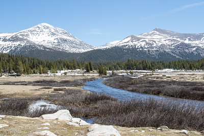 Mount Dana and Mount Gibbs