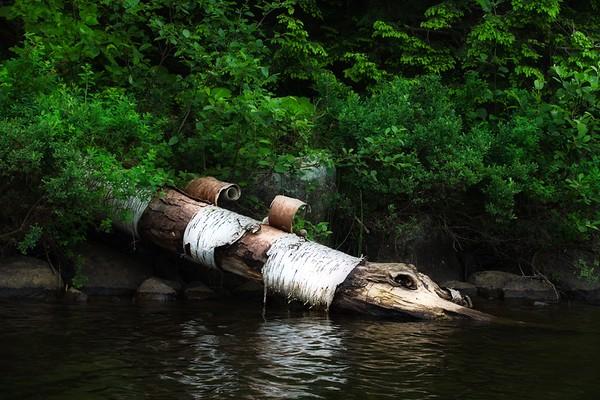 Thirteenth Lake, Adirondacks, NY - June 22