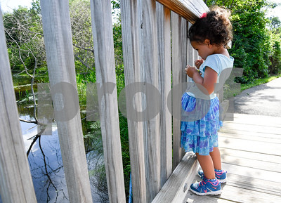 062817  Wesley Bunnell | Staff  Peyton Normal, age 3, takes a small bite of her vegetable stick snack before feeding the fish at Mill Pond Park on Wednesday while on a walk with mom Diana & dad John.