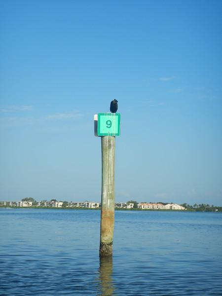 06-11-18 Barrier Island 8am