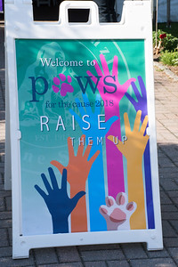 Paws for the Cause Auction and Dinner