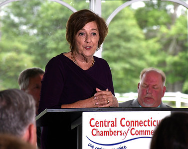 6/13/2018 MIke Orazzi | Staff Plainville's Kathy Pugliese during the State of the City  & Towns Breakfast Wednesday morning.