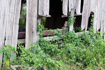 06/27/18  Wesley Bunnell | Staff  What appears to be an old bed frame can be seen through the side of a small shed at Rooster Rise Farm which is currently undergoing renovations by owner Brent Biederman who purchased the property two years ago.