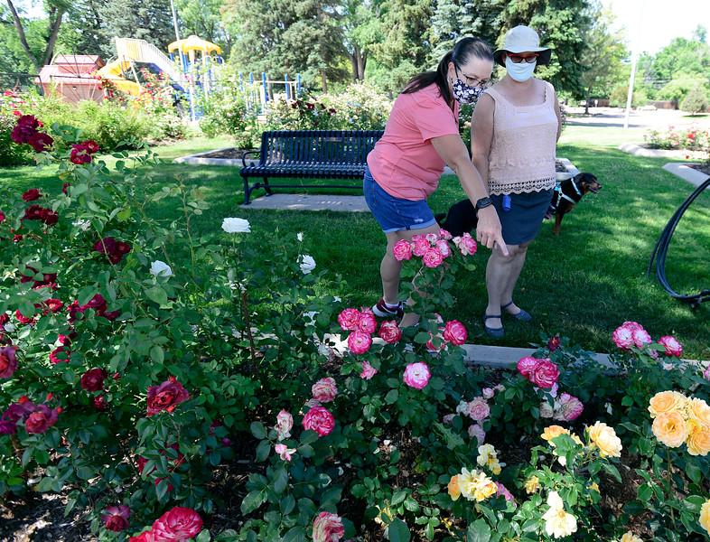 Longmont Memorial Rose Garden