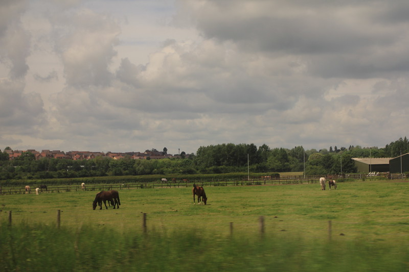View from the train between Swindon and Bristol Parkway