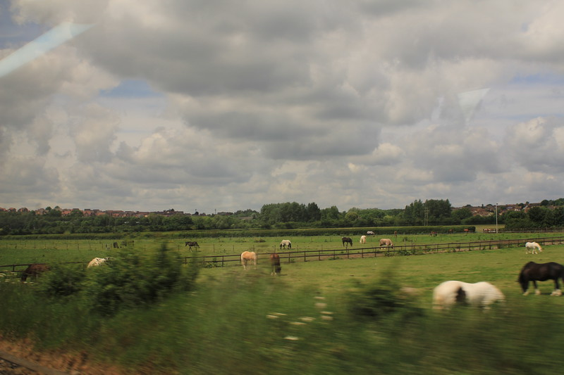 View from the train between Swindon and Bristol Parkway.