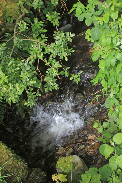 Roadside creek between Ffald-y-Brenin and Jabes Vestry