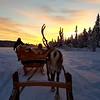 Hop on Hop off Lapland