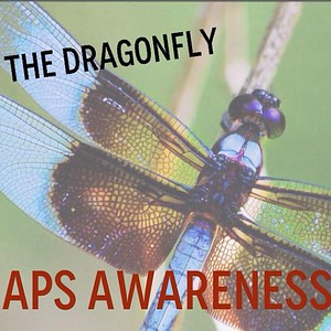 Did you know that the dragonfly is the symbol for Antiphospholipid Antibody Syndrome much like the butterfly symbolizes #Lupus? #apsawareness #dragonfly #goburgundy #aps #antiphospholipid #apsfa