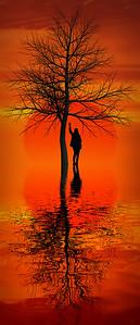 """""""Tree, Sun, Doe."""" Colour."""