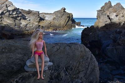 Barbie at Shipwreck Creek Beach.
