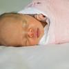 June Newborn0005