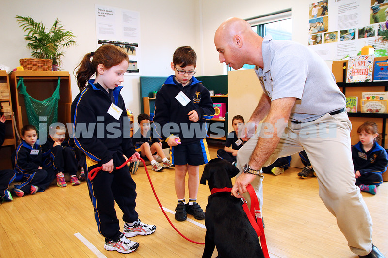 25-6-14. Dogs For Life program at Bialik College. Dog trainer Yariv Ben-Yosef and Tassie working with grade 1 students Ruby Held and Woody Weissman. Photo: Peter Haskin
