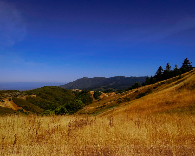 Mount Tam from Windy Gap on Pine Mountain