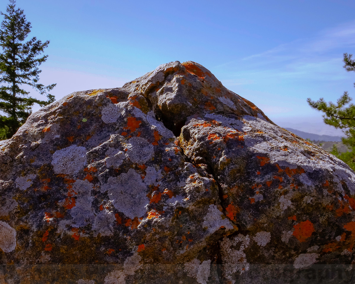 Another View of Pine Mountain Summit