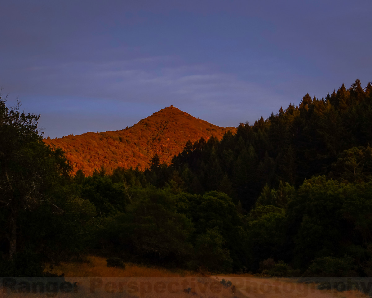 Late Afternoon Light on Tam from Lakeview