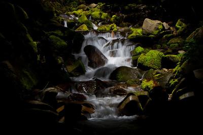 Close to Sol Duc Falls