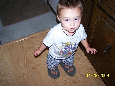 June-November 2009