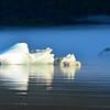 Iceberg reflections on Mendenhall Lake