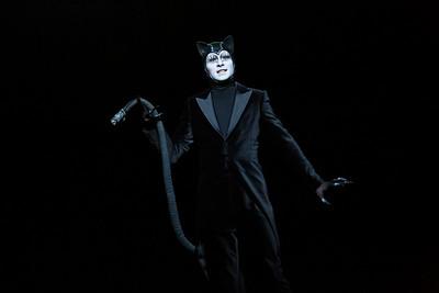 André Kaczmarczyk (Bagheera the Panther)