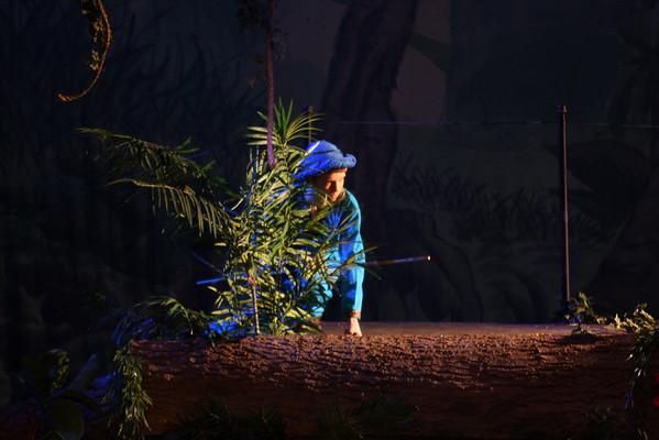 Jungle Book--In the Village