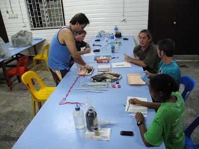 Jungle Histology