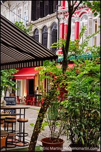 SINGAPOUR VILLE JARDIN. QUARTIER DE DUXTON HILL