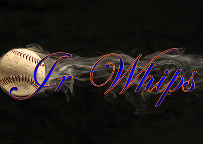 Junior Whips logo low res