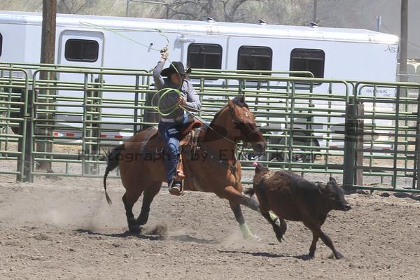 Arlington Jr Rodeo Sunday 05/27/2012 Ribbon Roping