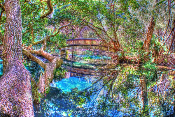 Juniper Springs, Fl, Secret Bridge