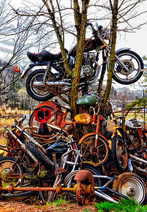 """Wild Ride"" - Motorcycles, bicycles and more - Catalog #0030"