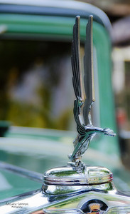 1932 Cadillac-Hood Ornament
