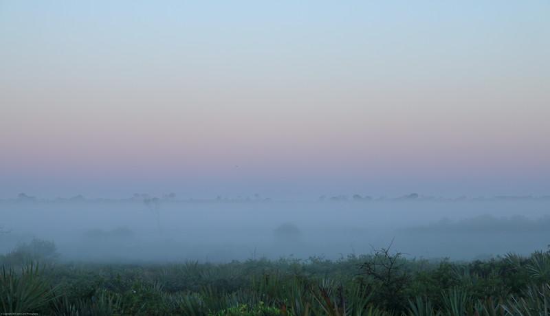 Juno Beach Fog