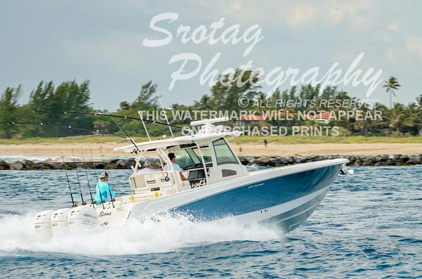 Shooting Seas