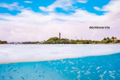 DSC05177 David Scarola Photography, Jupiter Lighthouse, march 2018, web1