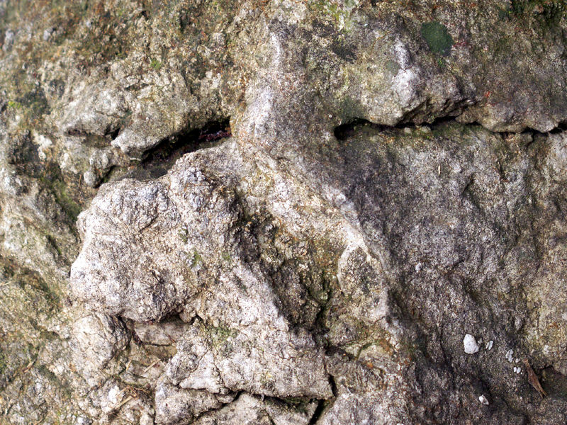 Rock in the side yard