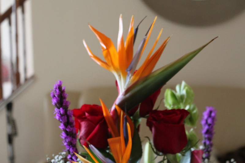 This flower is called the birds of paradise my husband always put this in the arrangement.  It reminds him of a bird back home in Jamaica.