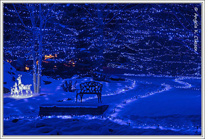 A bench awaits at the end of a blue pathway, Christmas 2013