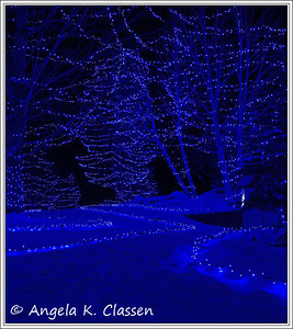 Blue pathway, Christmas 2013
