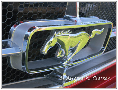 Mustang grill action, car show at Palisade Peachfest 2013