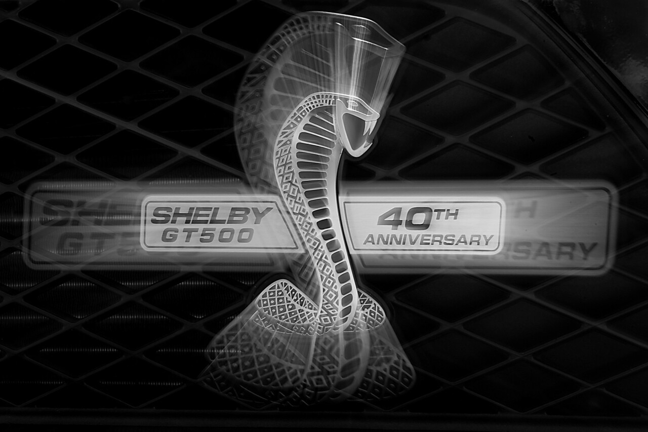 40th Shelby, junps out and grabs you.