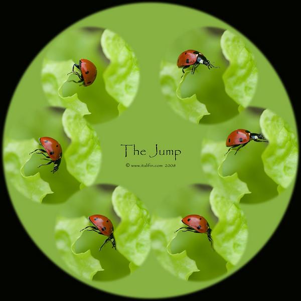 The round jump