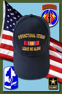 Dysfunctional Veteran