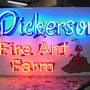Dickerson Fire Ant Farm
