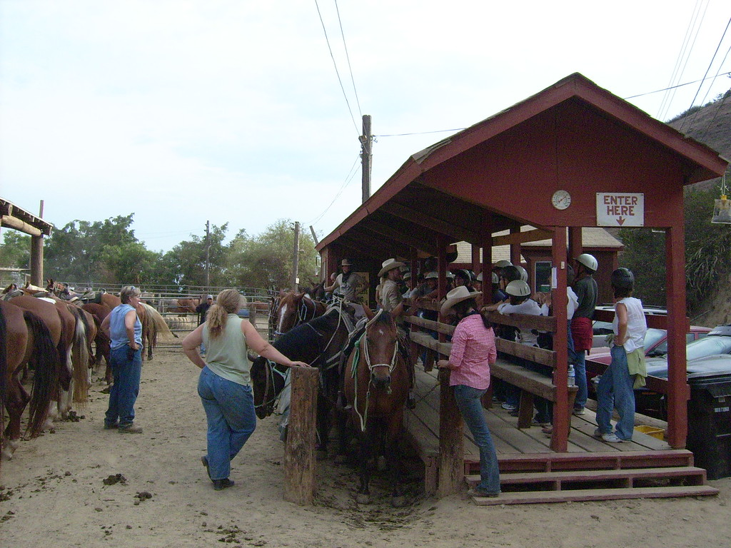 The horses are in the mounting line, the head guide, 'Trace', explains the process and matches the riders to the horses.