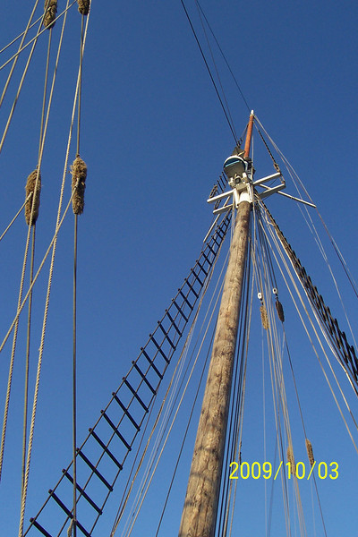 The Main Mast.  Rigging height on this schooner is 100 ft - up. :)
