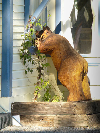 Wooden Bear in Window