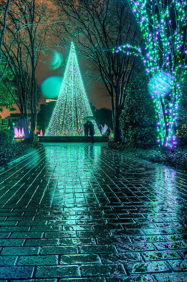 """<h3><strong>Today's Photo: Admiring the Tree</strong></h3> This was one of my favorite shots from the Garden Lights exhibit.  When we first went by this, the tree was fabulous, but it was so crowded.  We finished walking around and I wanted to get a good shot of this.  The only problem was that the rain had picked up and we almost went back to the car.  I am extremely glad that I decided to go back.  The rain and the fact it was only about 20 minutes from closing made for a beautiful scene.  As we entered the Twinkling Terrace and looked down the walkway to the Orchestral Orbs, I was greeted by this sight.  The couple waited forever, it was like they were waiting for me to get the perfect photo.  - Daryl Clark  Read more at the <a href=""""http://justshootingmemories.com"""" rel=""""nofollow"""">Daily Photography Blog</a> Just Shooting Memories!..."""
