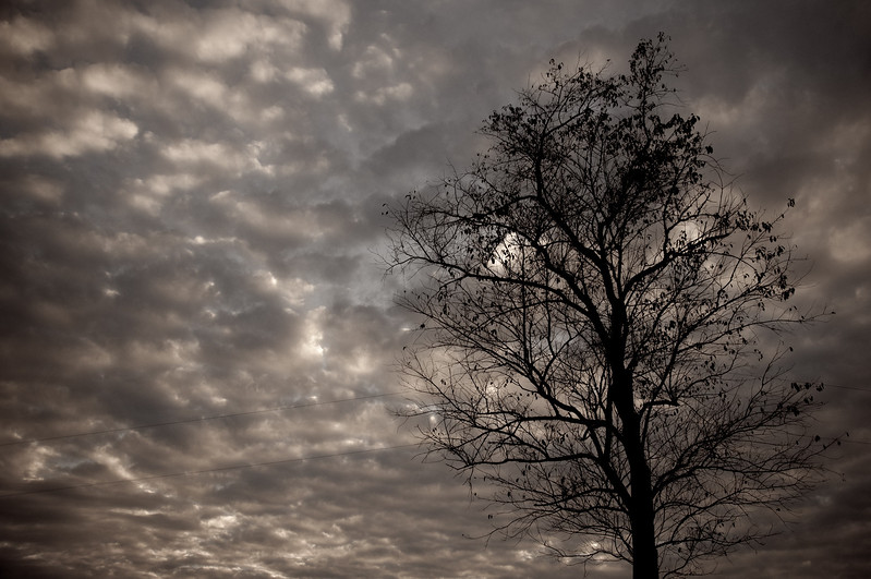 """<h3 style=""""text-align: left;""""><strong>Today's Photo: Clouds and More Clouds</strong></h3> With all of this wired weather, the one thing we have not lacked has been clouds.  That has been the problem also.  Either there are so many that it is just a sheet of grey, or the skies are completely empty.  This was during one of those transition periods and did not last long.  Just behind this came the rain and grey."""